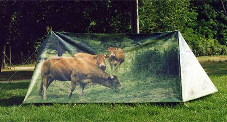Cow Tent