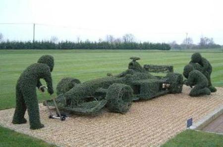 Formula 1 Hedge