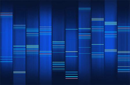 Web 2 DNA